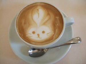 Cappuccino bunny