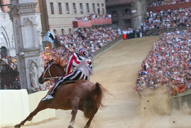 Palio Horse Race Siena Italy July
