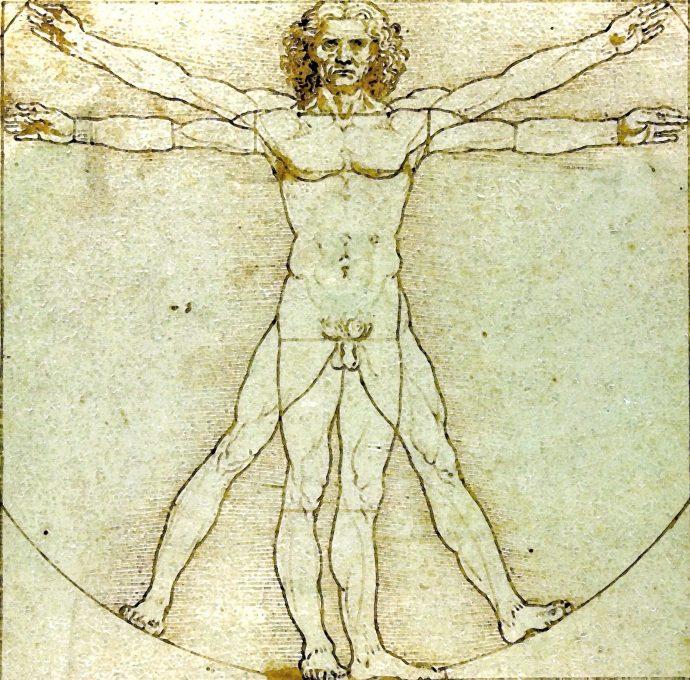 Vitruvian Man Da Vinci