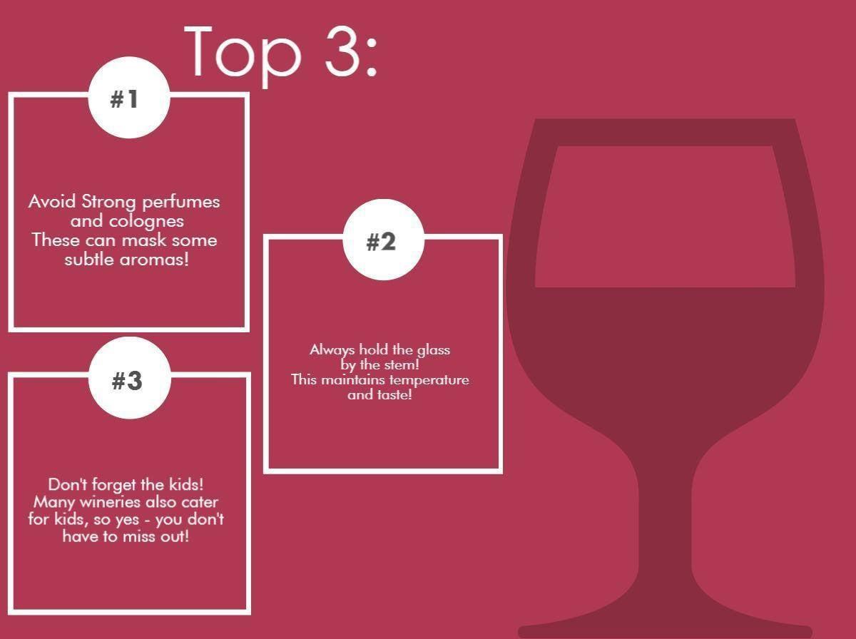 Puglia Wine tasting Infographic