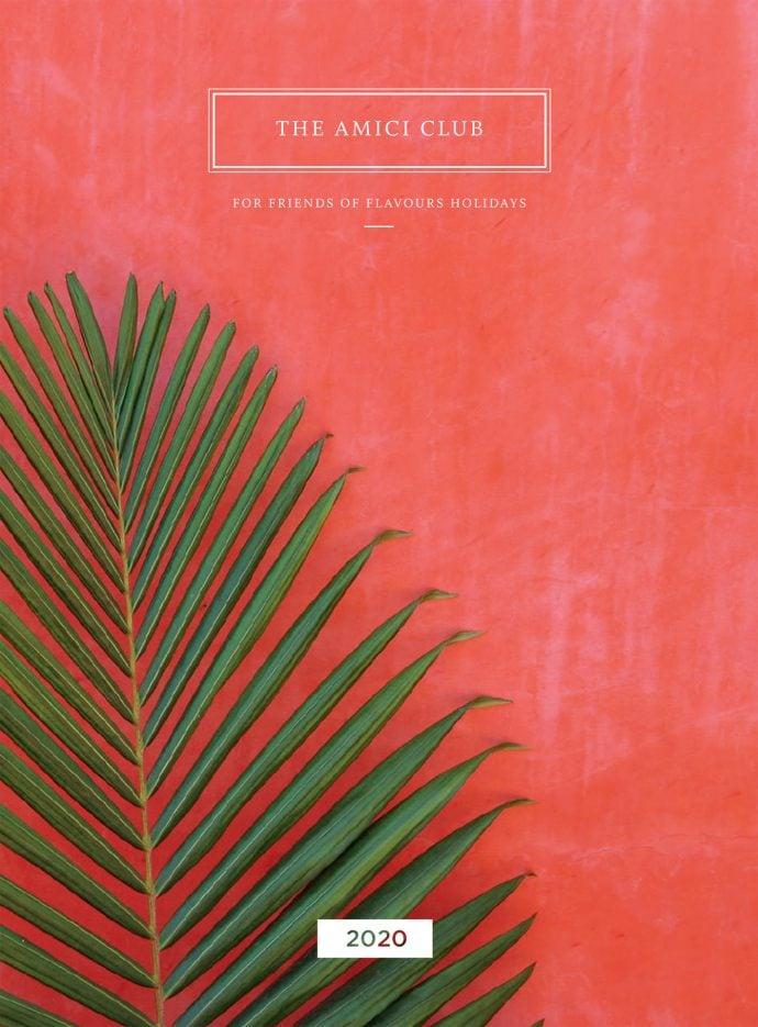 Amici Brochure Cover