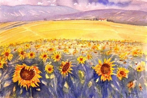 watercolour painting by Michael Gahagan of Tuscan sunflowers fields