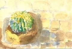Catherine Sargeant painting in watercolour