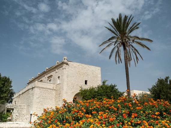 Villa and Palm Tree in Sicily