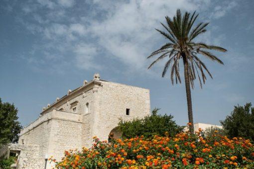 Villa and Palm Tree in Sicily